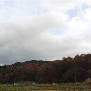 県境の山はすっかり紅葉。夕暮れ時の散歩。夕食後にウッドストックのおもちゃで。
