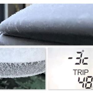 さぶー、氷点下、霜の朝。氷が張っている。キャッチはいつものスヌーピーのリンリン。