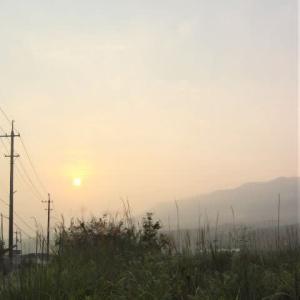 楽になった朝の散歩。赤い太陽。廊下でスリッパ「持ってきて」