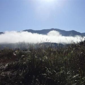 青空だけど、低いところにまだ雲が。スリッパで「持ってきて」