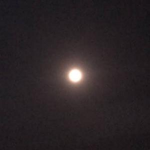 今宵 満月。ストロベリームーン(*´∀`)♪