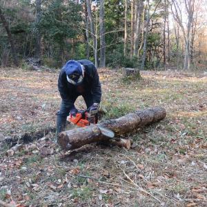 薪割りと手作りコンニャク