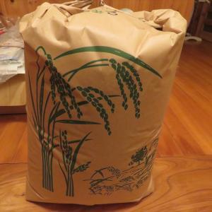 新米とビーツの種蒔きと落花生の収獲