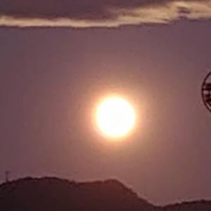 月が余りにも綺麗なので!