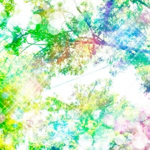 華やかな色と派手な色の違い