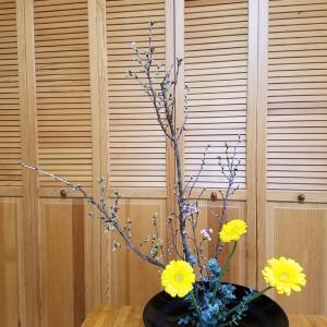 東海桜とガーベラで☆レッスンリポ