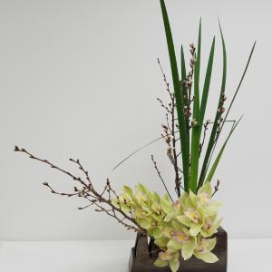 桜とシンポジウムとオクラレルカ☆レッスンリポ