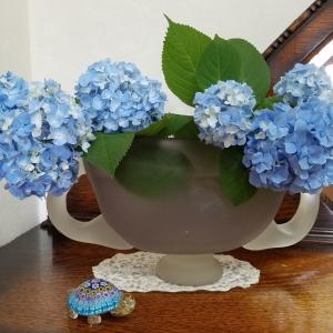庭の紫陽花☆オリジナルガラス器にいけて