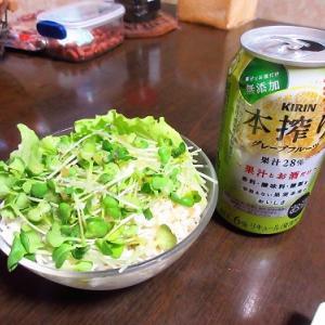 焼き秋刀魚やカニカマ豆腐のトロ旨煮で晩酌&フットルース知ってる?