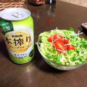 チョリソー入り野菜スープと里芋煮で晩酌&またもやネット繋がず