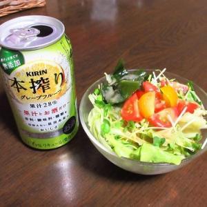 餃子やもやしサラダや手作り玉子豆腐で晩酌&夏の計画は・・・
