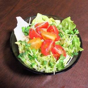 でっかい海老天!天ぷら蕎麦で平日晩ごはん&蕎麦vsうどん