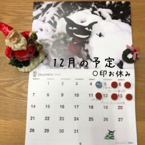 今年もあと1ヶ月☆12月もよろしくお願いします。