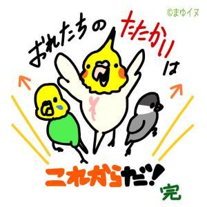 明日10/5(土)~10(木)の6日間は、愛媛県「東急ハンズ松山店」で出店します