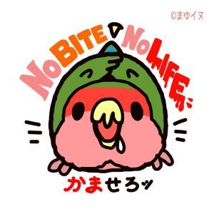 新作「NO BITE NO LIFE」、デザフェス、小鳥ガーデン神戸等にて販売します!