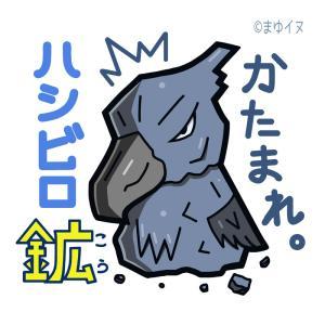 明日7/27~8/6まで静岡県「掛川花鳥園」にて出店します&8月9月は新宿・横浜で催事開催です