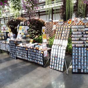 本当に久々のイベント出店となります…夏休み期間は静岡県の「掛川花鳥園」にて出店します