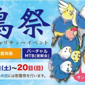 6/12~20にオンラインで初開催される「第5回 愛鳥祭」に作品出品で参加します