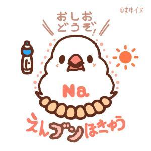 これからの暑くなる季節の新作デザイン「えんブンほきゅう」