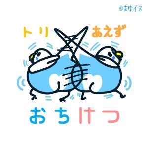 新作「トリあえずおちけつ」 & 7/14~27は高槻阪急3F「高槻ことりフェスタ」で出展します