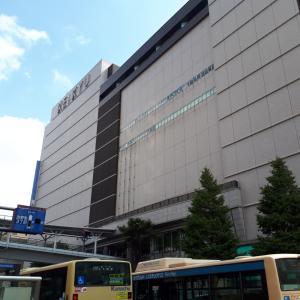 京急百貨店「小鳥のアートフェスタ in 横浜」、今年もありがとうございました