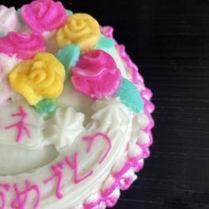 かまぼこケーキ