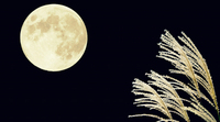 月と明朗by職場の教養(#^.^#)