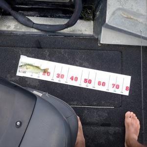 7月末の滋賀で釣り三昧~その2 バス釣りで予想通りの大苦戦