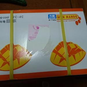 台湾から愛文マンゴーが届いた