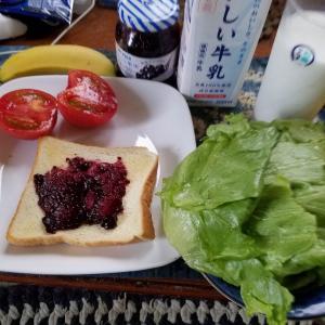 宇宙人せいじの朝食2
