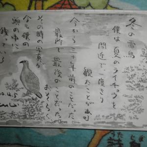 福知山の精神病院から20
