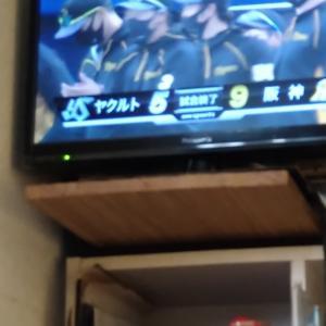 阪神タイガース勝利!!