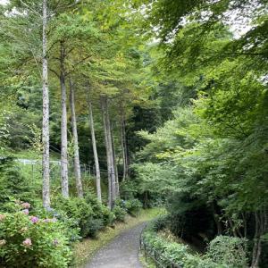 木の家(秋保温泉)