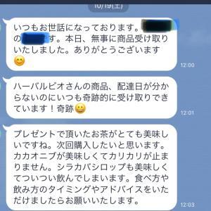 【大人気・シラカバ樹液とジェモレメディ】
