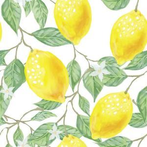檸檬 レモン lemon