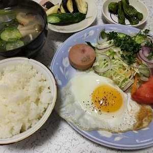 野菜たっぷり朝ごはん