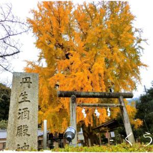 * 【わかやま歴史物語】+神社巡りの旅、その17 *
