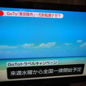 go to travel キャンペーン東京は除外