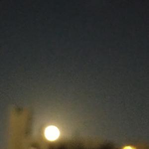 6時過ぎてから月が。中秋の名月。