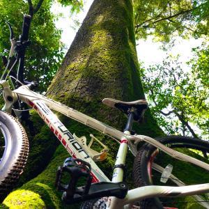 高槻 ぽんぽん山へ自転車で登ってみた 山頂へサイクリング