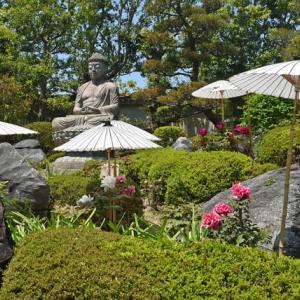 川中光教師(當麻寺奥院住職)の「お寺の柔軟な活用法を探りたい」