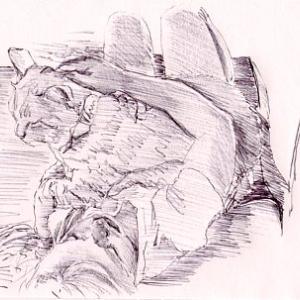 ラフスケッチ(1691)