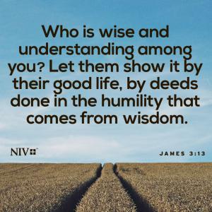 知恵は柔和さで示す