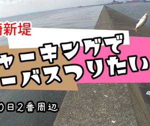 09/20 川崎新堤 シーバス×1 アジ×3 カサゴ×1