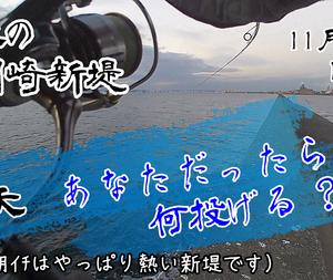 11/29 川崎新堤 シーバス×2 ワラサ×1