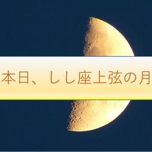 本日「しし座」で上弦の月です。