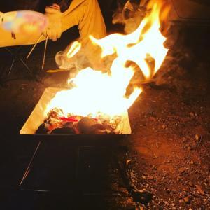 焚き火中🤣