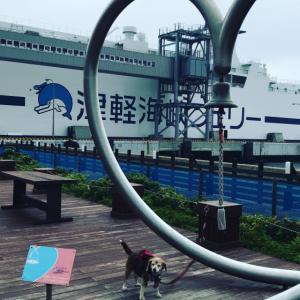 サヨナラ北海道 また来年😭