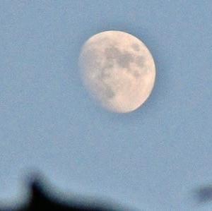 月と木星、土星が並んで見えた