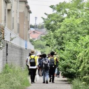 散歩に行って大学生集団に遭う
